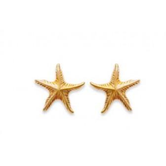 Boucles d'oreilles plaqué or 750/000 3 microns CEJBIID
