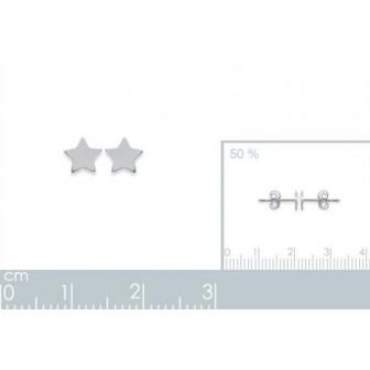 Boucles d'oreilles argent 925/000