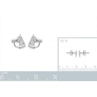 Boucle d'oreilles argent 925/000