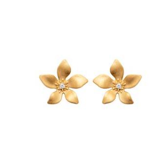 Boucles d'oreilles plaqué-or 750/000 3 microns oz 2286610